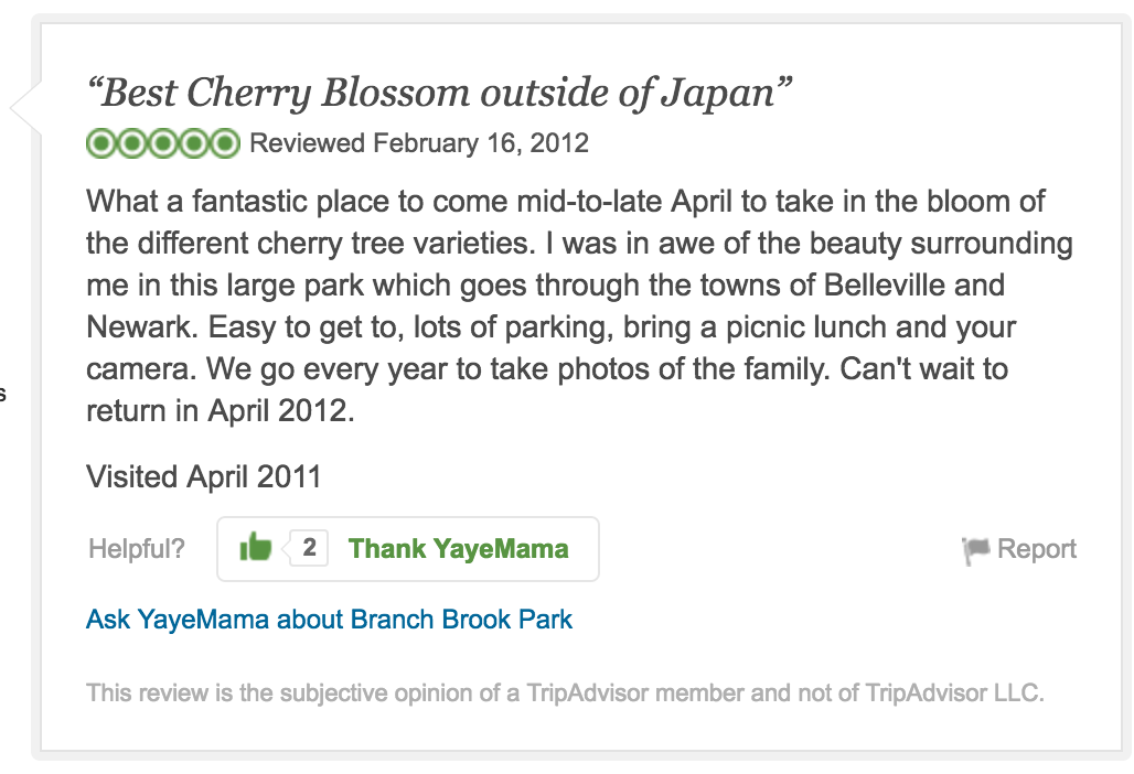Cherry Blossoms TripAdvisor