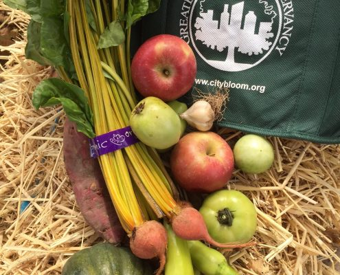 conservancy produce csa day